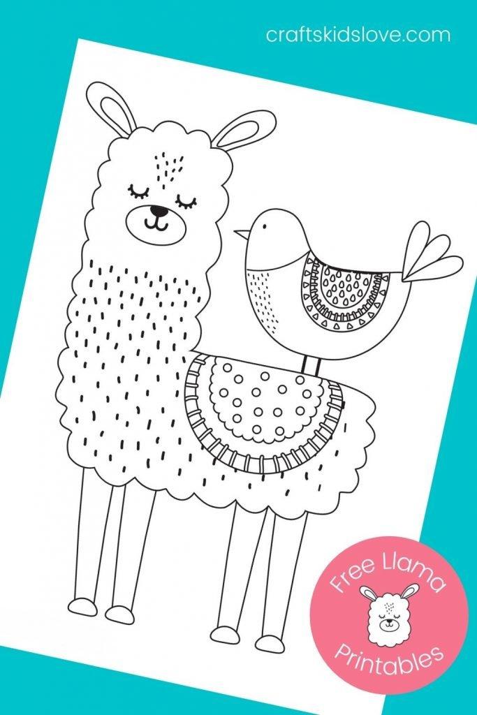 cute llama coloring printable page on aqua background