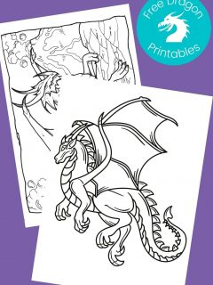 Black and white dragon pictures to color