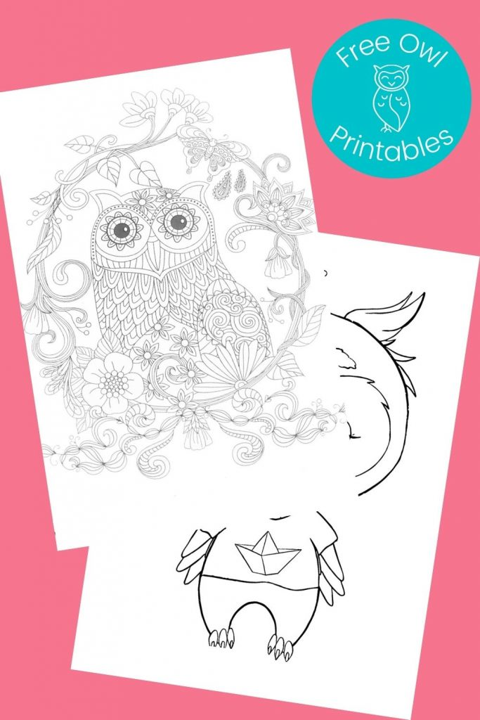 Black and white owl pictures to color