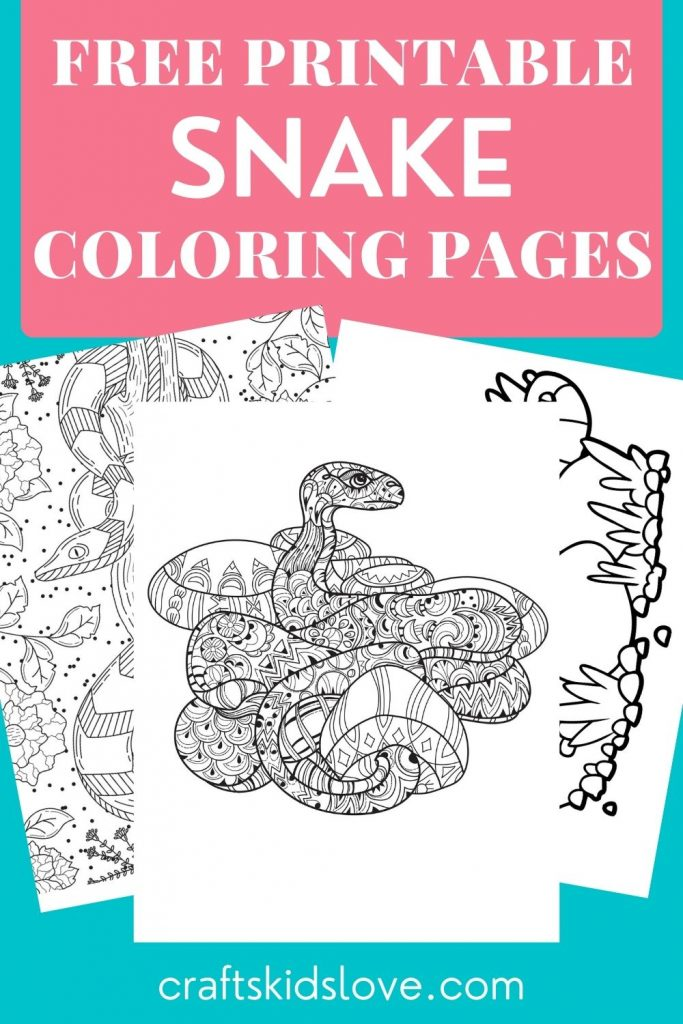 Black and white snake pictures to color on aqua background