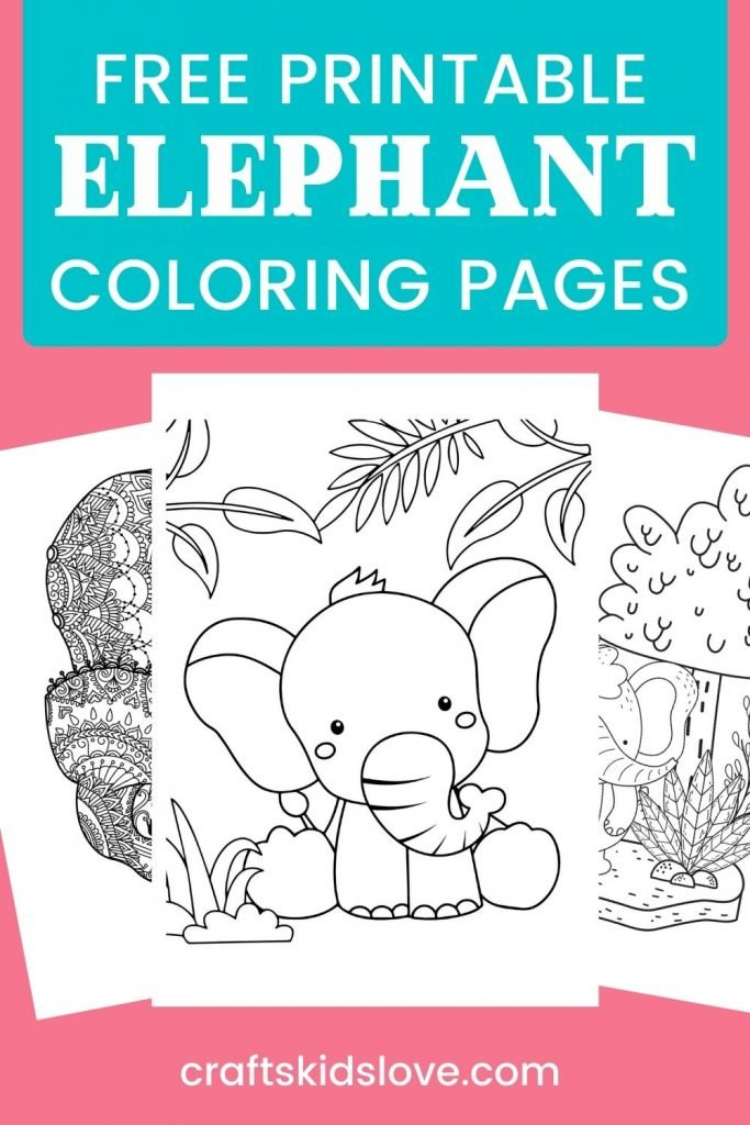 Elephant coloring pages on pink background