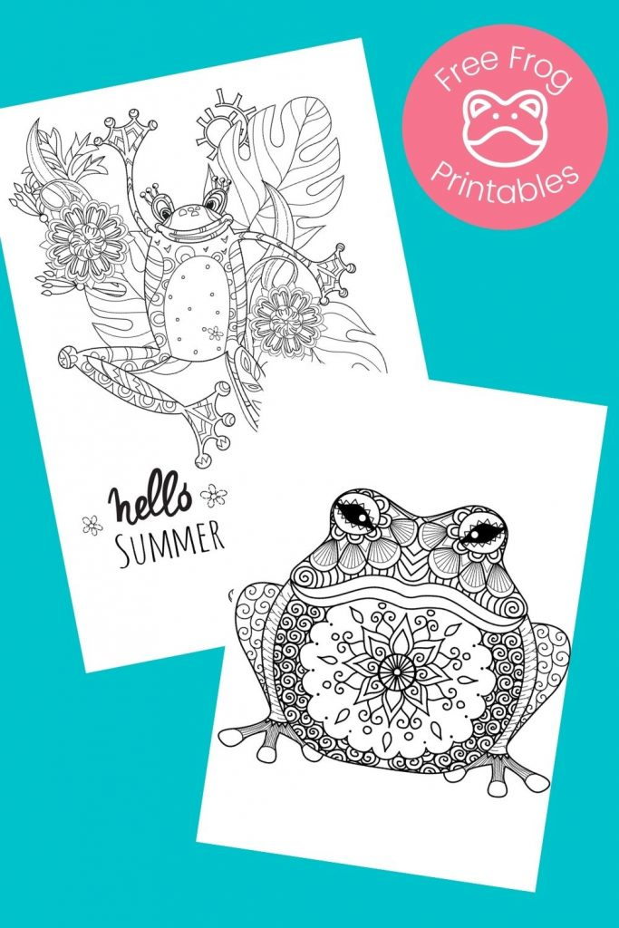 Frog coloring pages on aqua background