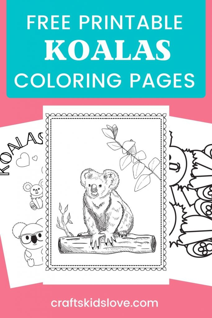 Koalas coloring pages on pink background