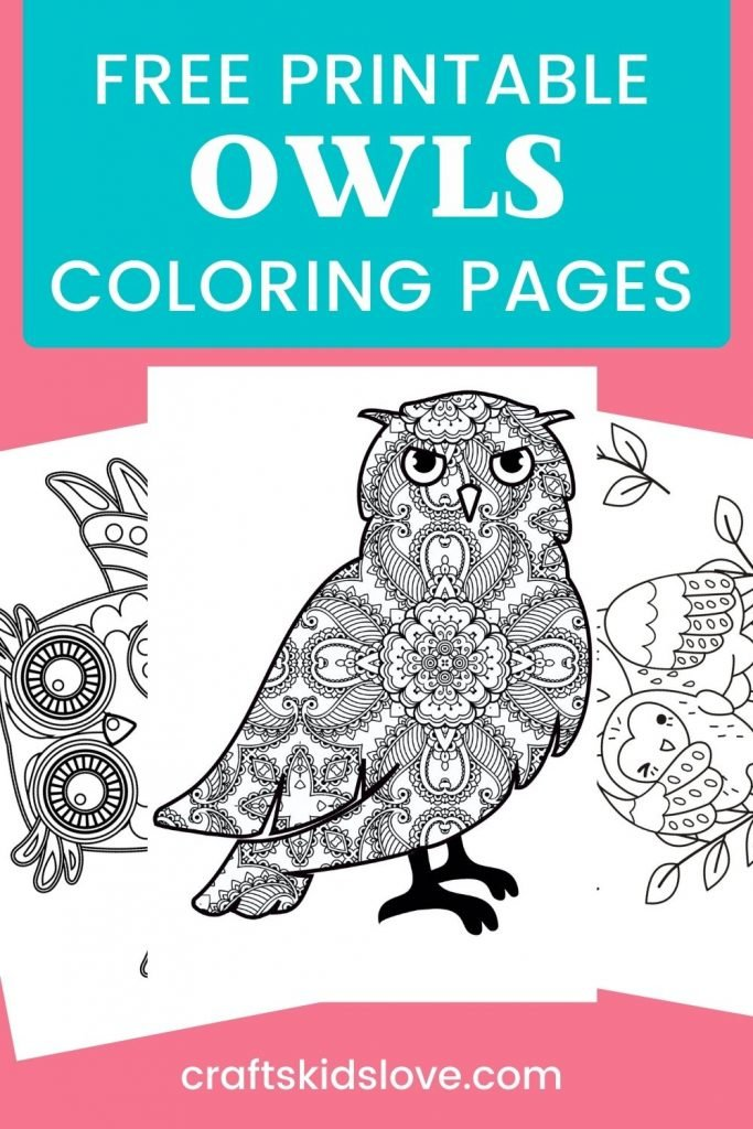 Owl coloring pages on pink background