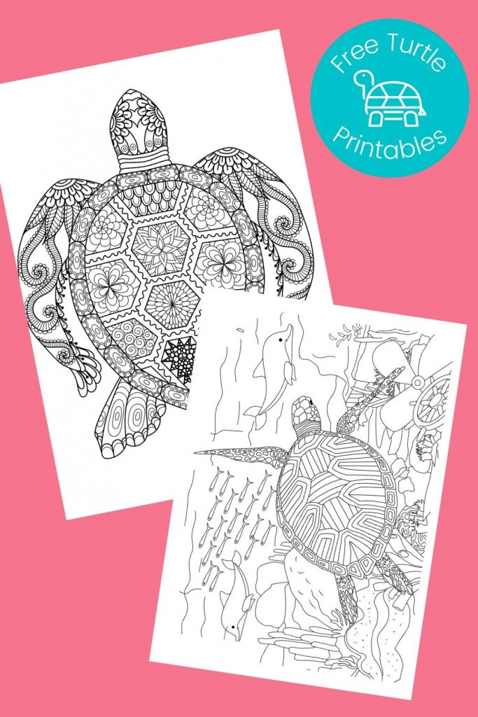 Black and white turtles coloring pages on pink background