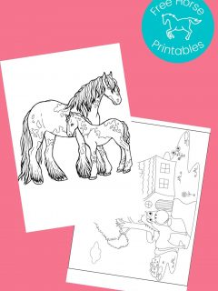 black and white pictures of horses to color