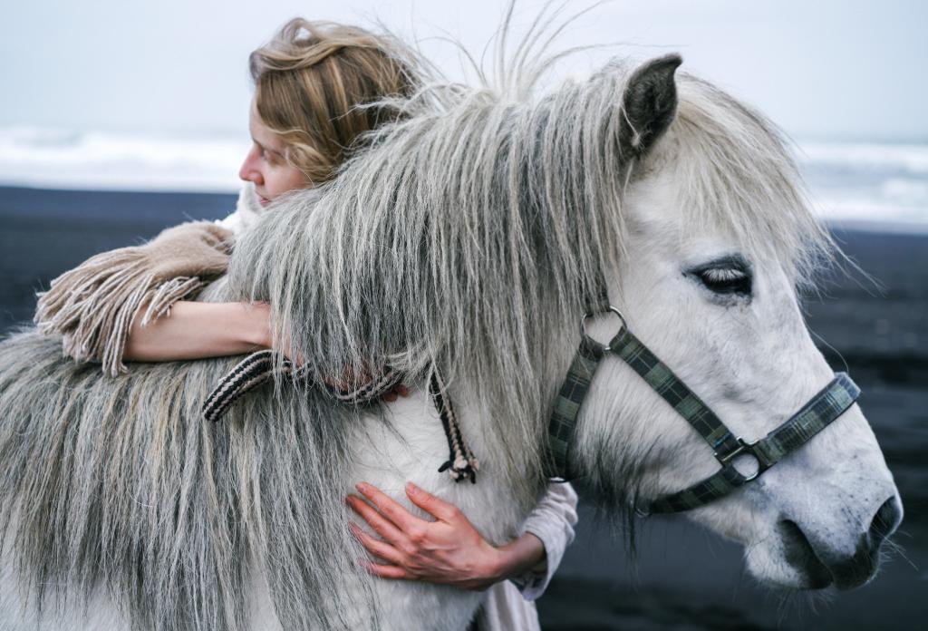woman hugging white horse