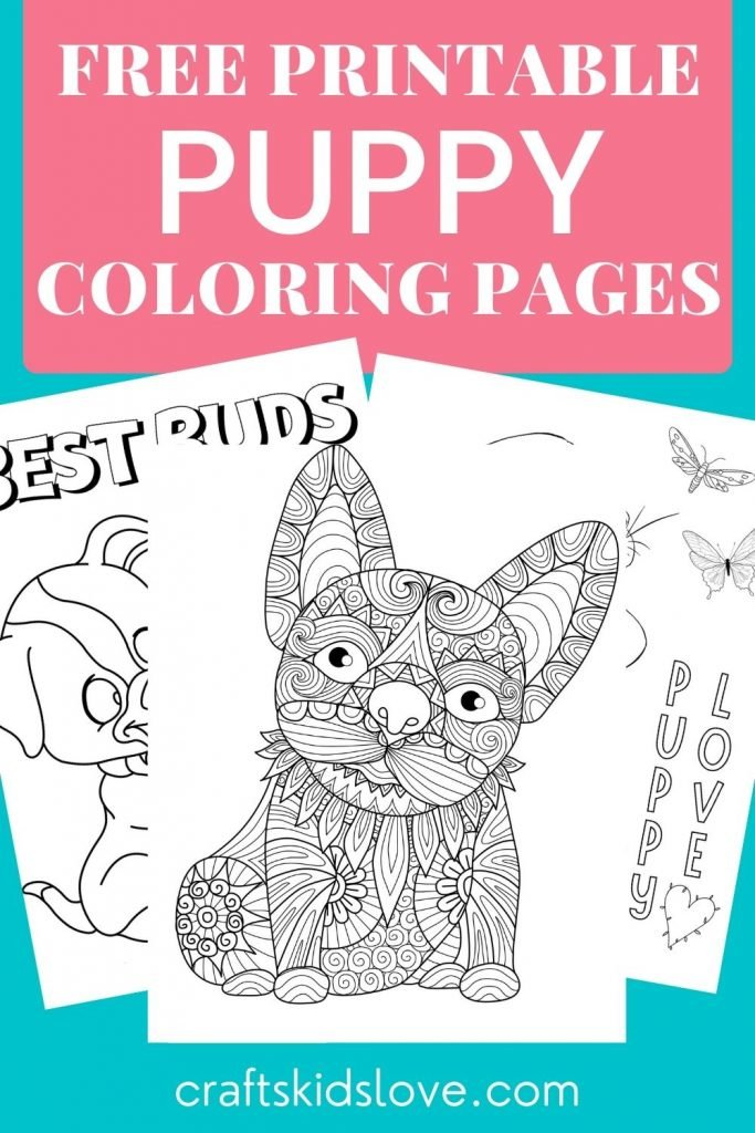 Black and white free printable puppy coloring pages on aqua background