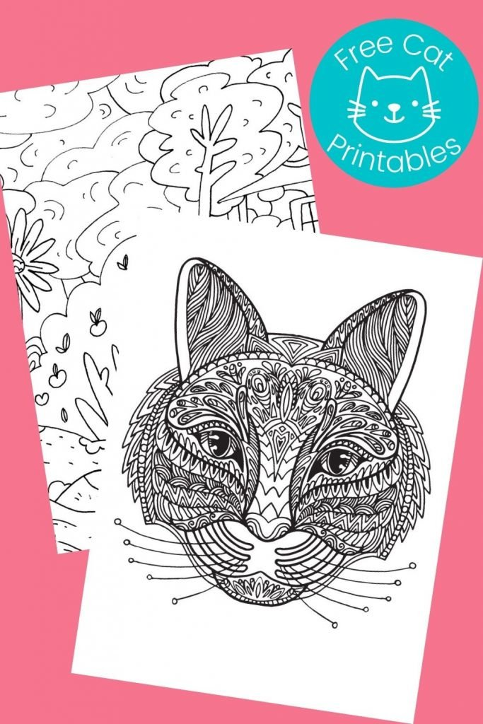 Black and white cat pictures to color on pink background