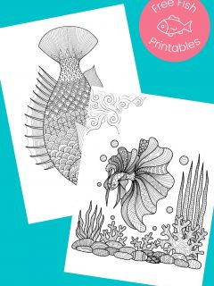 Black and white fish pictures to color