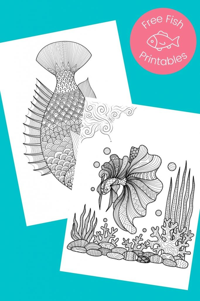 Black and white fish pictures to color on aqua background