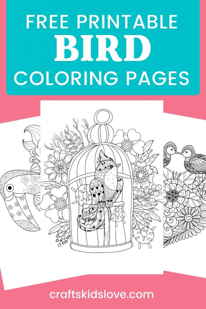 Black and white bird coloring pages on pink background