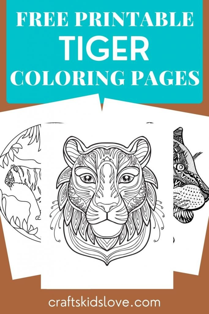 Black and white tiger coloring pages on brown background