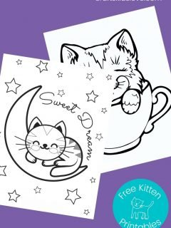 kitten pictures to color