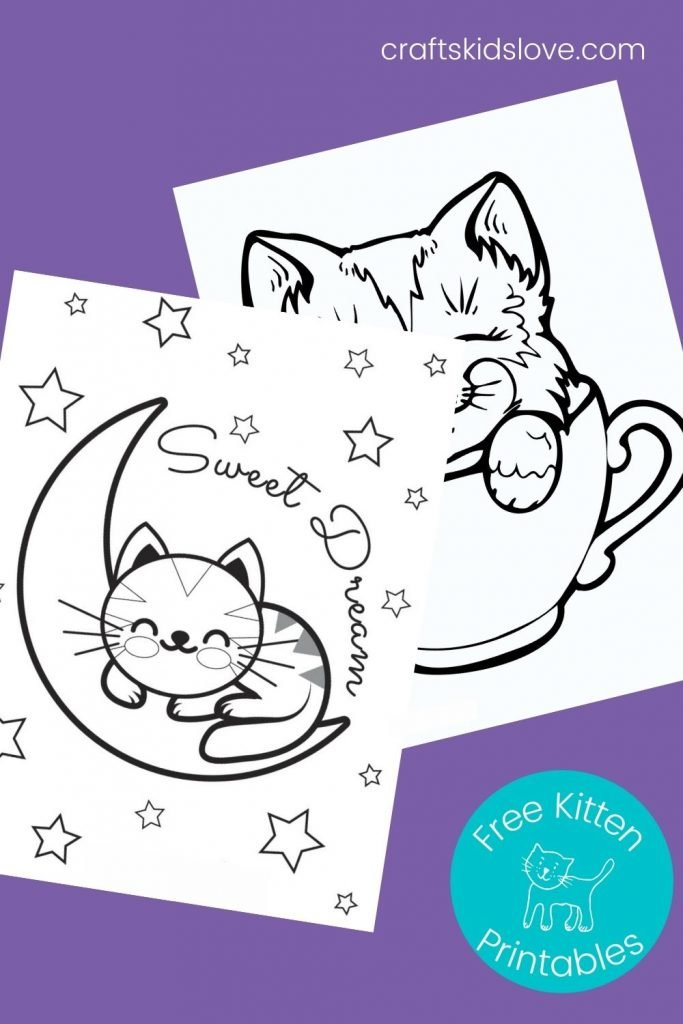 black and white kitten pictures to color on purple background - free printable kitten coloring pages